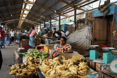 スリランカ最大都市コロンボのおすすめ観光スポット