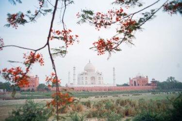 インド女子ひとり旅【Day2】デリーからアグラへ