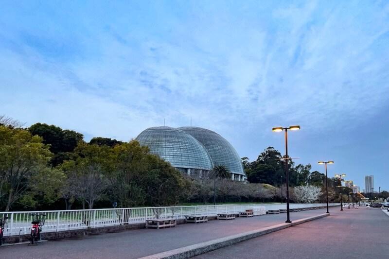 夢の島植物園