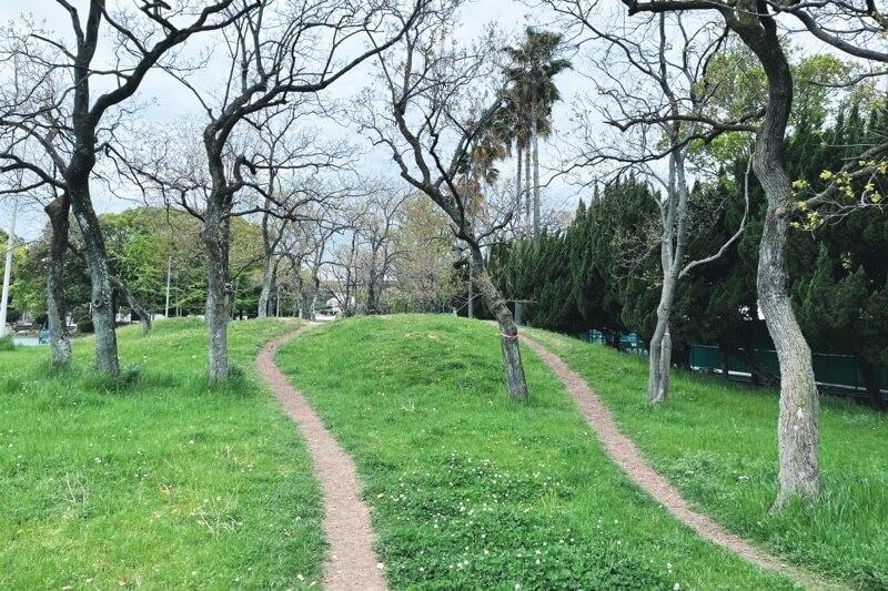 久宝寺緑地ランニングコースのトレイルコース