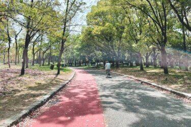 大阪4大緑地「久宝寺緑地」ランニングコース【1周1.4km〜】