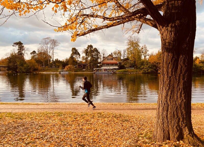 秋のランニング